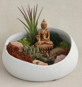 buddha herb garden buddha grove