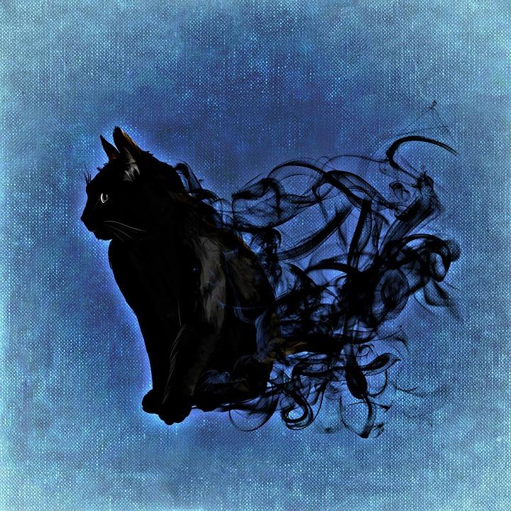 samhain black cat